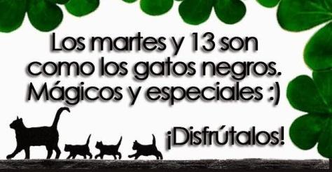 Gatos-Martes-13-WEB-2